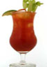 Bloody Maria Drink Recipe