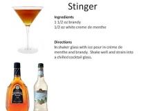 b_Stinger