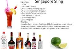 b_Singapore_Sling
