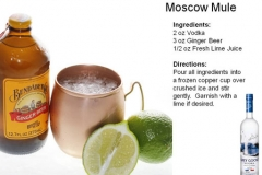b_Moscow_Mule