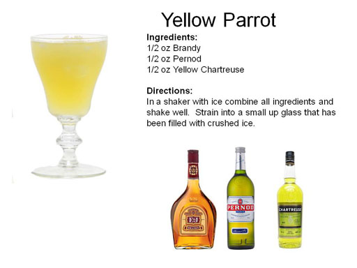 b_Yellow_Parrot