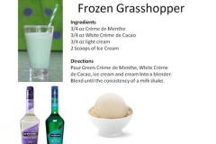 b_Frozen_Grasshopper
