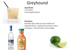 b_Greyhound