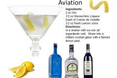b_Aviation
