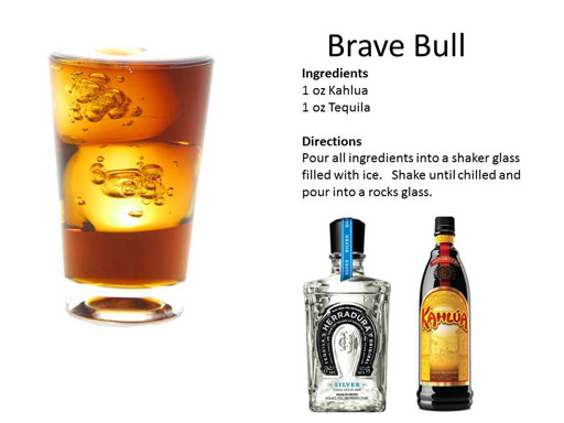 b_Brave_Bull
