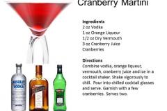 b_Cranberry_Martini