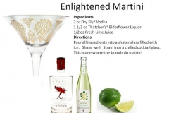 b_Enlightened_Martini