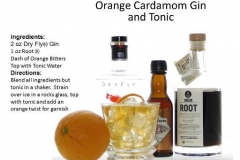 b_Orange_Cardamom_Gin_And_Tonic