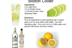 b_Boston_Cooler