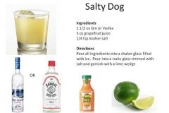 b_Salty_Dog