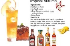 b_Tropical_Autumn