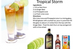 b_Tropical_Storm