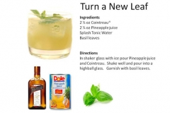 b_Turn_A_New_Leaf