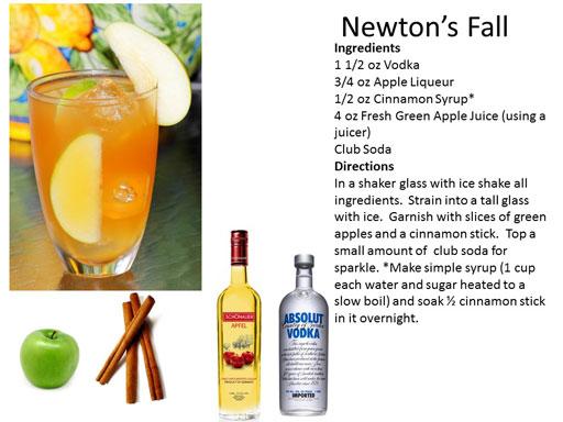 b_Newtons_Fall
