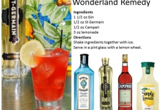 b_Wonderland_Remedy