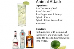 b_Animal_Attack