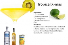 b_Tropical_Xmas