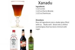 b_Xanadu